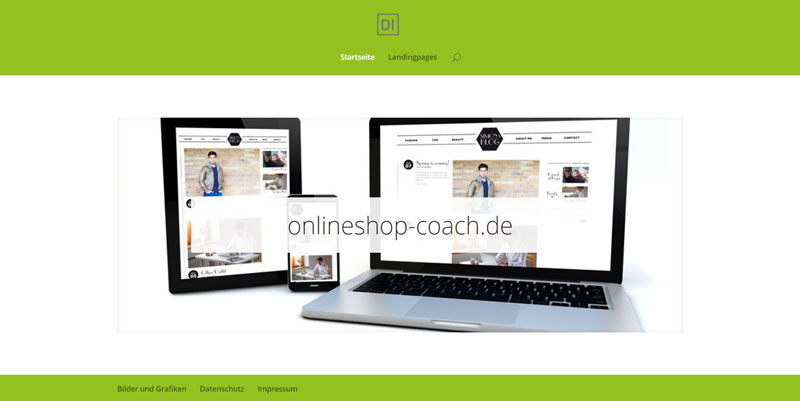Geschäftsidee Onlineshop Coach